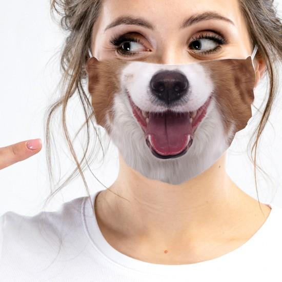 bouche-nez-canne de chien...