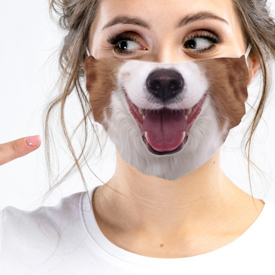 Mouth-nose-masks-dog nauts