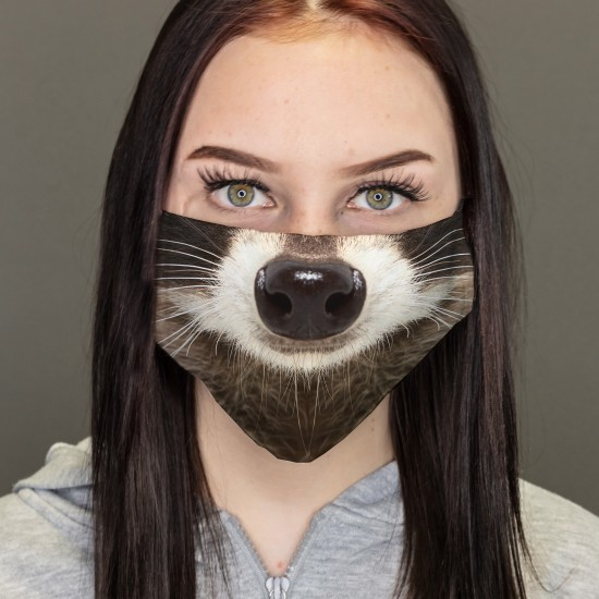 Mouth-Nose-Masks-Raccoon
